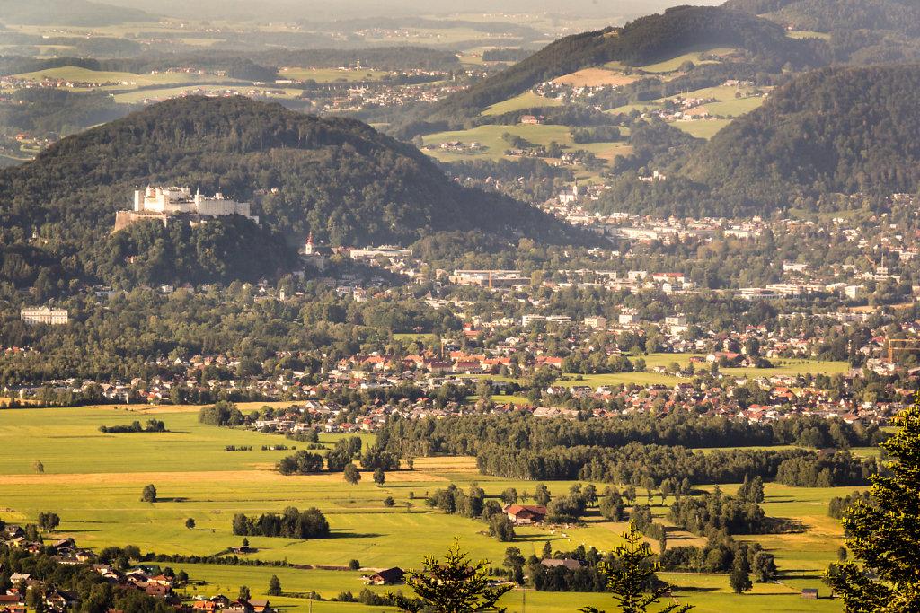 MBrandtner-4569.jpg